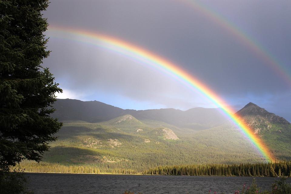 Arcoíris en laguna bosque paisaje