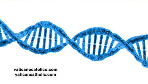 El ADN refuta la 'teoría' de la evolución que inventó Charles Darwin