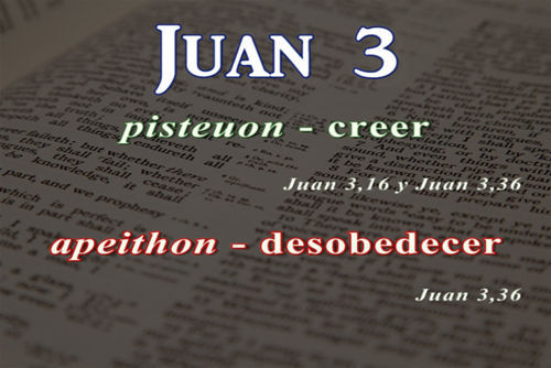 Juan 3 16 Léxico Griego Español