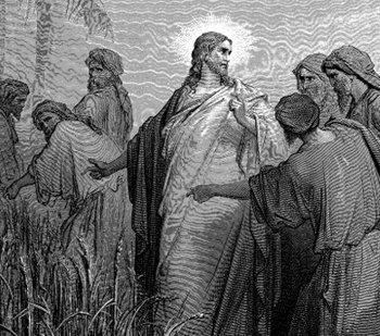 Los fariseos acusaban a los discipulos de Jesús de no guardar el sábado