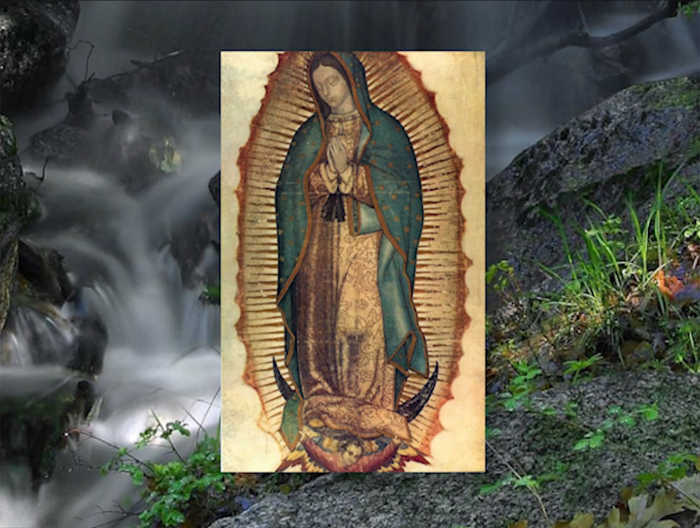 La Imagen de Guadalupe: ¡Un Milagro! (VIDEO)